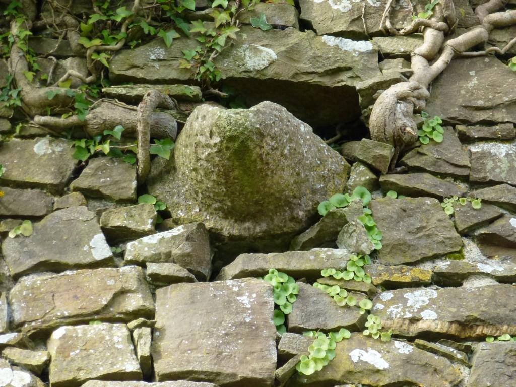 Ballingarry Fanning Castle Farrenrory Slop Stone