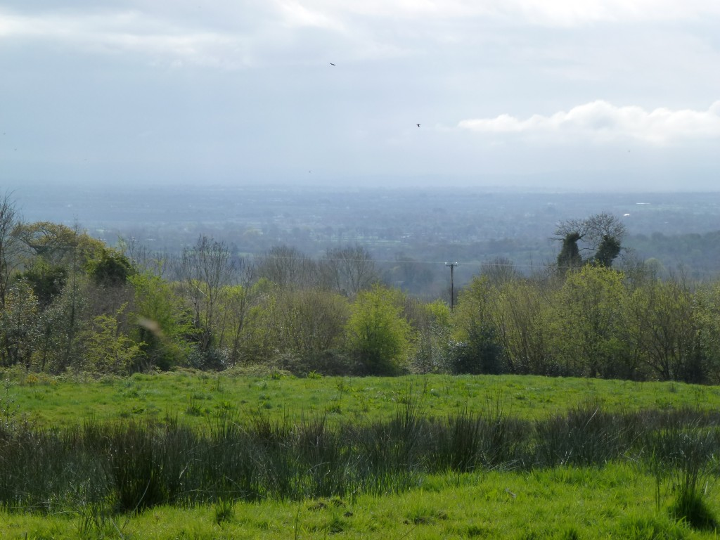 Ballingarry Fanning Castle Farrenrory View from
