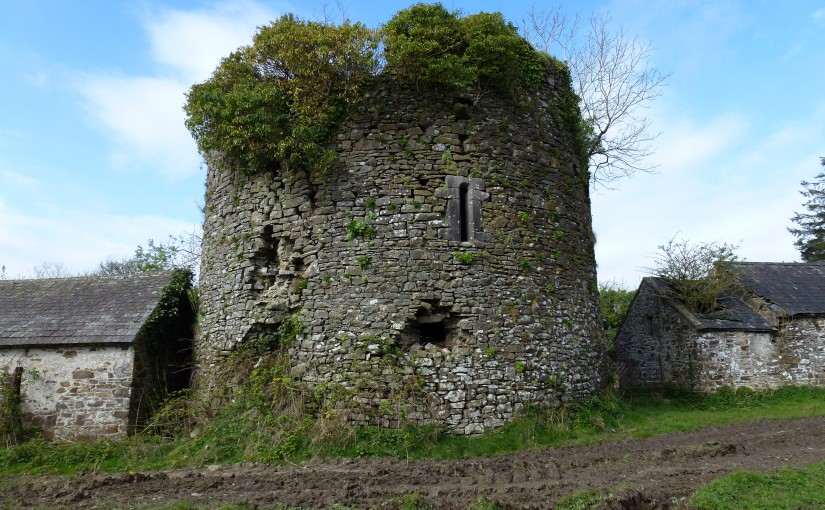 Fanning Family Landholdings in Ballingarry Co Tipperary Ireland 1650 and 1850