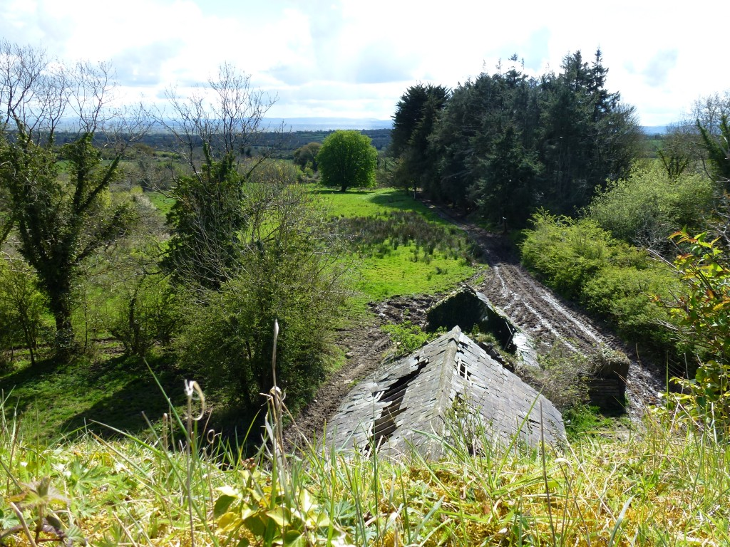 Ballingarry View from Fanning Castle Farrenrory Co Tipperary (3)