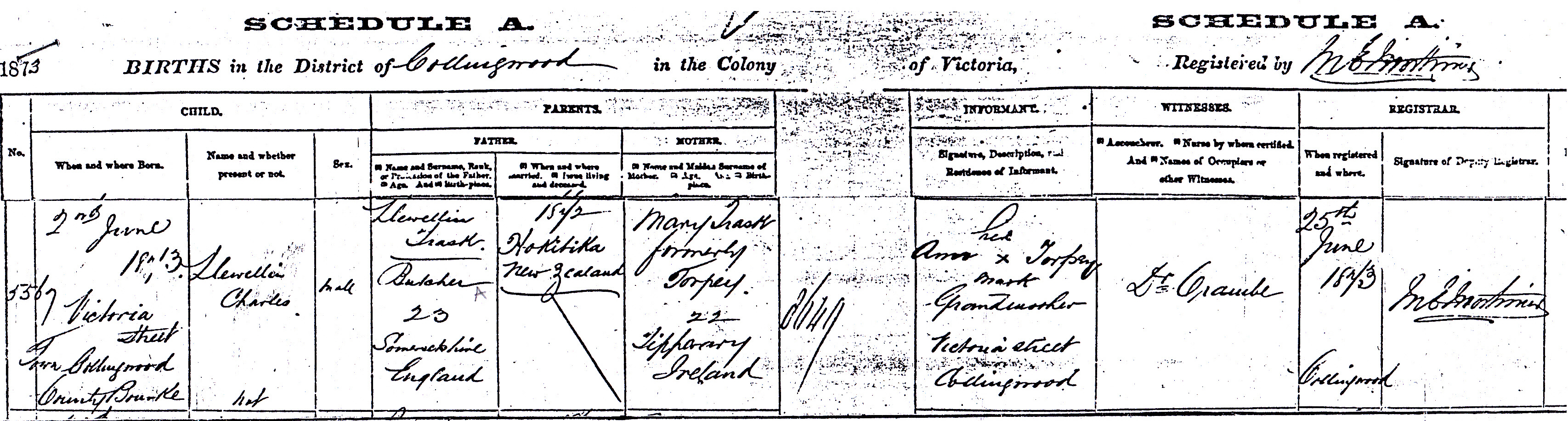 Birth Certificate Llewellyn Charles Trask born 1873_NEW