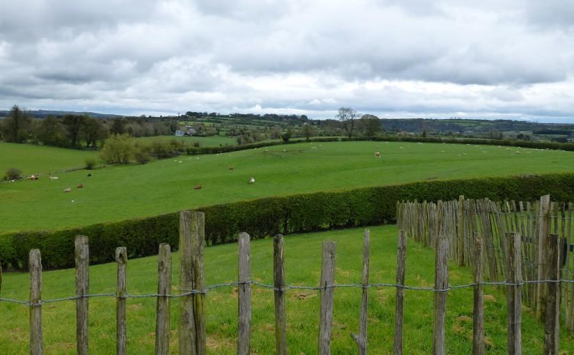 Irish Land Divisions Described