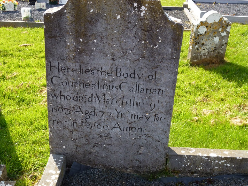 Killinan Cemetery Callanan Graves Co Tipperary Ireland (6)