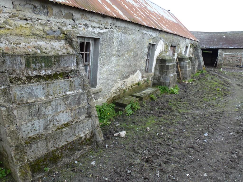 Lissaroon Co Tipperary Ireland (3)