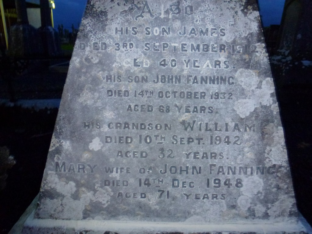 Loughmore Cemetery Co Tipperary Ireland James, John & William Fanning of Clondoty (2)