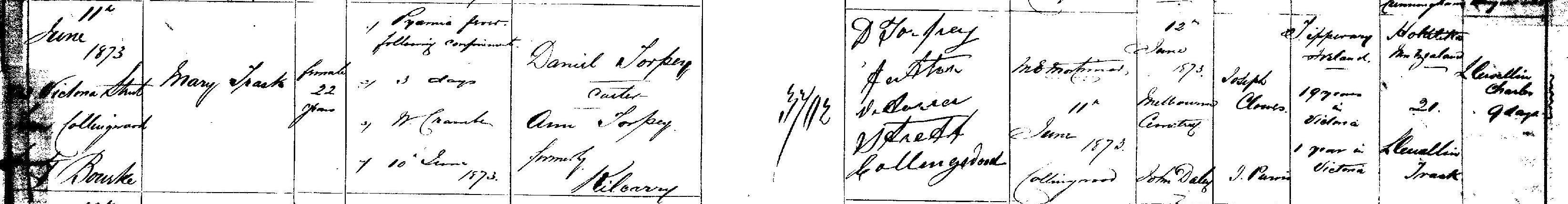 Mary Trask nee Torpey Death 1873cr