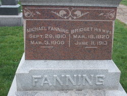 Michael Fanning born 29 Sept 1810 died Tazwell Illinois 1900