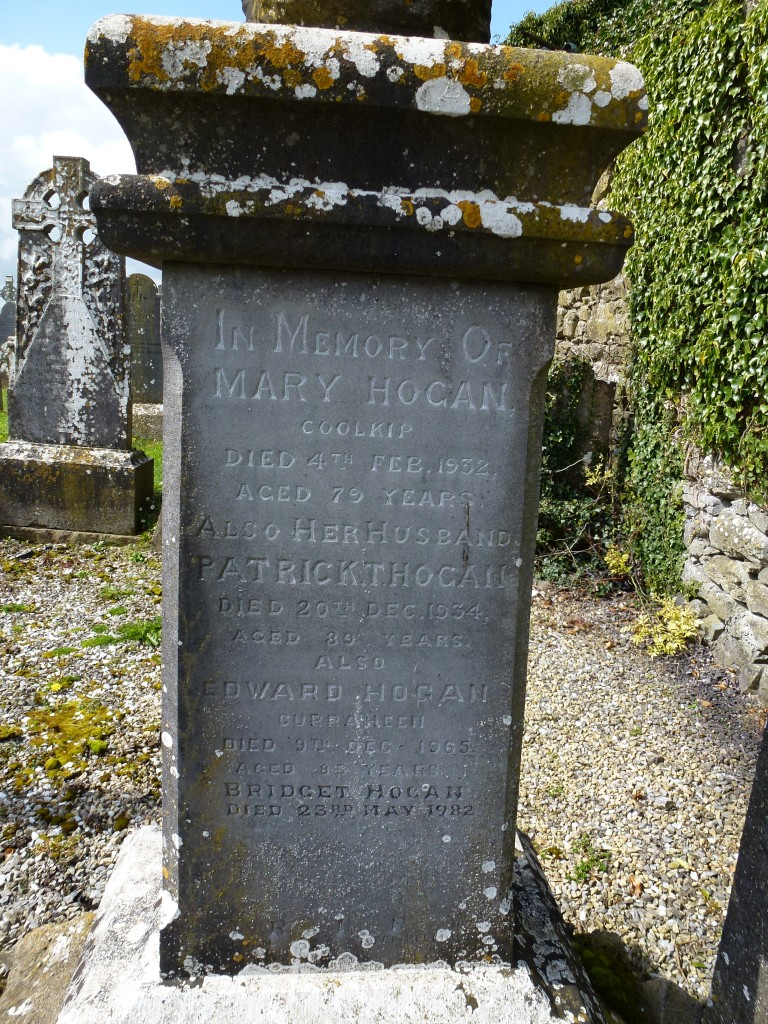 Moycarky Old Cemetery Hogans of Coolkip Co Tipperary Ireland (2)