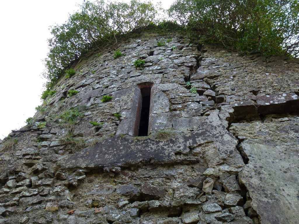 FAnning Tower House Farrenrory Ballingarry structural crack on the west side