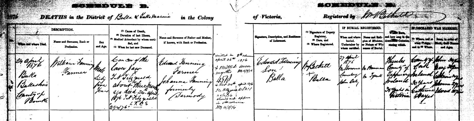 William Patrick Fanning Death certificate 1876.bmp