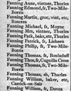 Guys Directory of Munster 1893