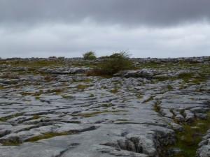 The Burren Co Clare